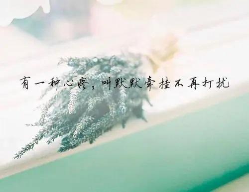 Bu Qian Gua 不牵挂 Don't Worry Lyrics 歌詞 With Pinyin By Zeng Xue Qi 曾雪祁
