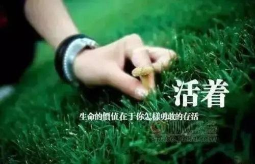Ren Huo Yi Sheng Dao Di Tu Shen Me 人活一生到底图什么 What's The Purpose Of One's Life Lyrics 歌詞 With Pinyin By Yu Zhong Bai He 雨中百合