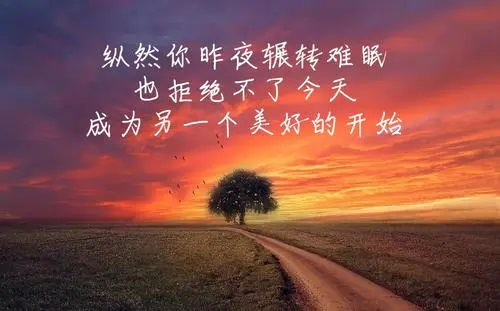 Jin Sheng Nan Mian 今生难眠 Sleepless In This Life Lyrics 歌詞 With Pinyin By Xiao Kai Feng 肖凯枫