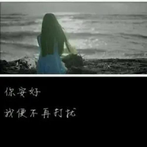 Yi Hou Bu Hui Zai You Ni 以后不会再有你 I Won't Have You Again Lyrics 歌詞 With Pinyin By Yun Fei Fei 云菲菲 Yun Feifei