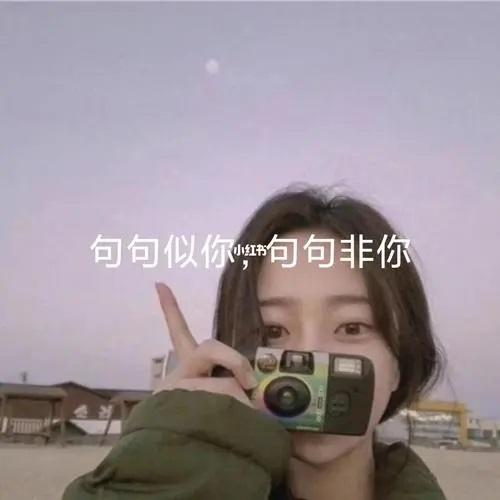 Si Ni Fei Ni 似你非你 Like You But Not You Lyrics 歌詞 With Pinyin By Zhang Da Lei 张大蕾Si Ni Fei Ni 似你非你 Like You But Not You Lyrics 歌詞 With Pinyin By Zhang Da Lei 张大蕾