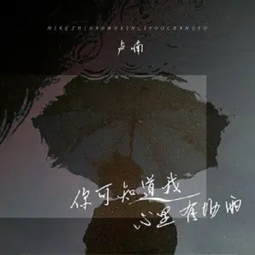 Ni Ke Zhi Dao Wo Xin Li You Chang Yu 你可知道我心里有场雨 Did You Know That There Was Rain In My Heart Lyrics 歌詞 With Pinyin By Lu Nan 卢喃
