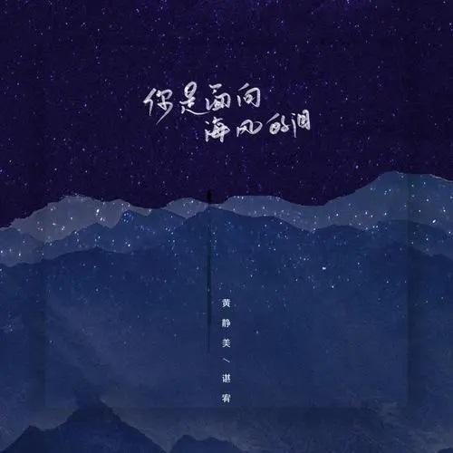 Ni Shi Mian Xiang Hai Feng De Lei 你是面向海风的泪 You Are The Tears Facing The Sea Breeze Lyrics 歌詞 With Pinyin By Huang Jing Me 黄静美 Chen You 谌宥