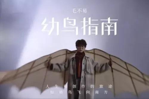 You Niao Zhi Nan 幼鸟指南 Chick Guide Lyrics 歌詞 With Pinyin By Mao Bu Yi 毛不易 Mao Buyi