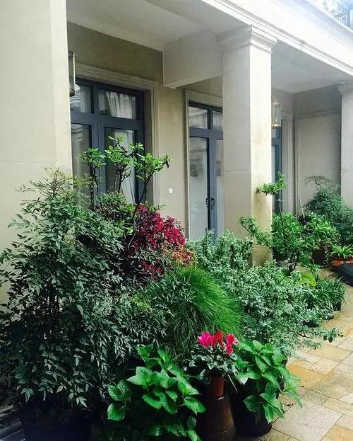 Ting Yuan Hong Hua Yu 庭院红花雨 Courtyard Safflower Rain Lyrics 歌詞 With Pinyin By Li Xiao Yu 李小雨 Xiaoyu Li