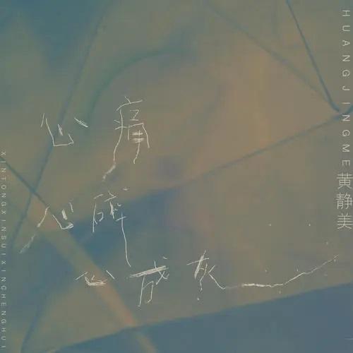 Xin Tong Xin Sui Xin Cheng Hui 心痛心碎心成灰 Heartache And Heartbreak And Turn Into Heart Ashes Lyrics 歌詞 With Pinyin By Huang Jing Mei 黄静美