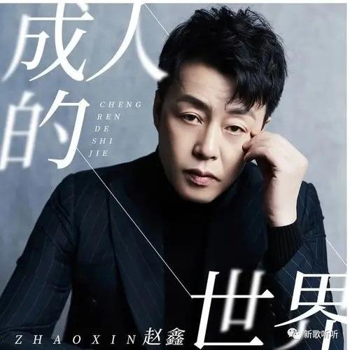 Cheng Ren De Shi Jie 成人的世界 Adult's World Lyrics 歌詞 With Pinyin By Zhao Xin 赵鑫