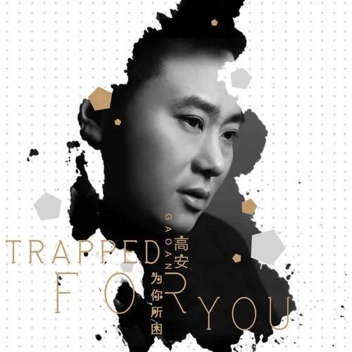 Wo Zhi Zhong Yi Ni 我只中意你 I Only Like You Lyrics 歌詞 With Pinyin By Gao An 高安