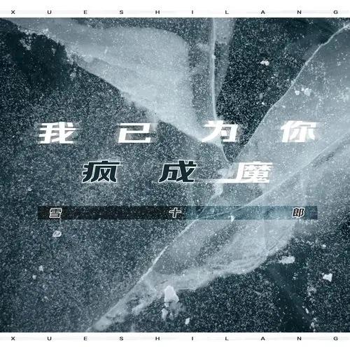 Wo Yi Wei Ni Cheng Feng Cheng Mo 我已为你成疯成魔 I've Become Crazy For You Lyrics 歌詞 With Pinyin By Xue Shi Lang 雪十郎