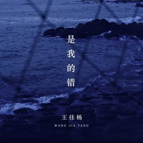 Shi Wo De Cuo 是我的错 My Mistake Lyrics 歌詞 With Pinyin By Wang Jia Yang 王佳杨Shi Wo De Cuo 是我的错 My Mistake Lyrics 歌詞 With Pinyin By Wang Jia Yang 王佳杨