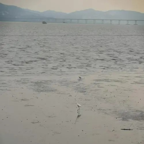 Wei Jian Chang An Ren 未见长安人 No People From Chang'an Lyrics 歌詞 With Pinyin By Xiao Zhou Zhou 小周周 Hathaway Chou