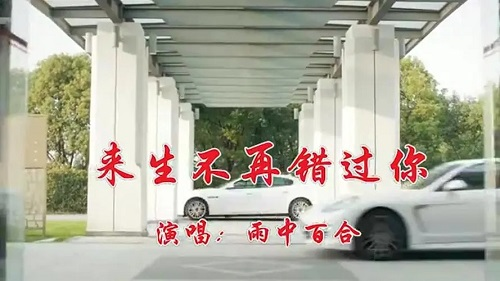 Lai Sheng Bu Zai Cuo Guo Ni 来生不再错过你 I Won't Miss You In The Next Life Lyrics 歌詞 With Pinyin By Yu Zhong Bai He 雨中百合
