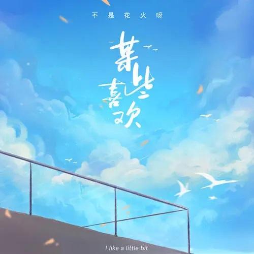 Mou Xie Xi Huan 某些喜欢 Some Like Lyrics 歌詞 With Pinyin By Bu Shi Hua Huo Ya 不是花火呀