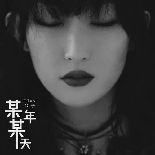 Mou Nian Mou Tian 某年某天 One Year One Day Lyrics 歌詞 With Pinyin By Cheng Jin 程今