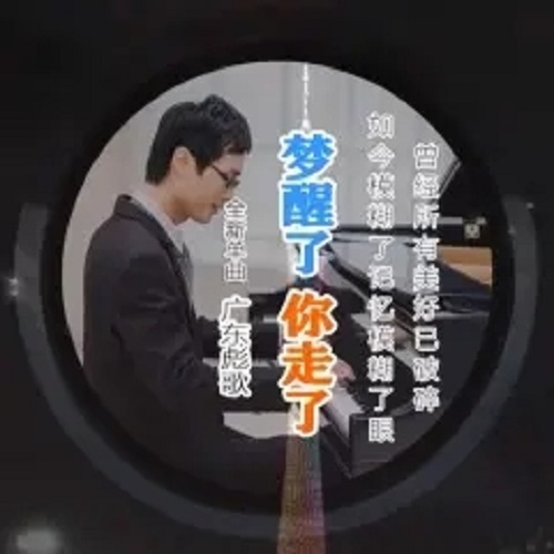 Meng Xing Le Ni Zou Le 梦醒了你走了 I Wake Up And You're Gone Lyrics 歌詞 With Pinyin By Guang Dong Biao Ge 广东彪歌