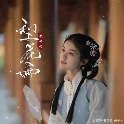 Li Hua Yu 梨花雨 Pear Blossom Rain Lyrics 歌詞 With Pinyin By Zhi Su Xi 执素兮