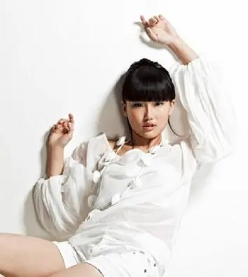 Chu Hun 楚魂 Soul Of Chu Lyrics 歌詞 With Pinyin By Huang Ling 黄龄 Isabelle Huang