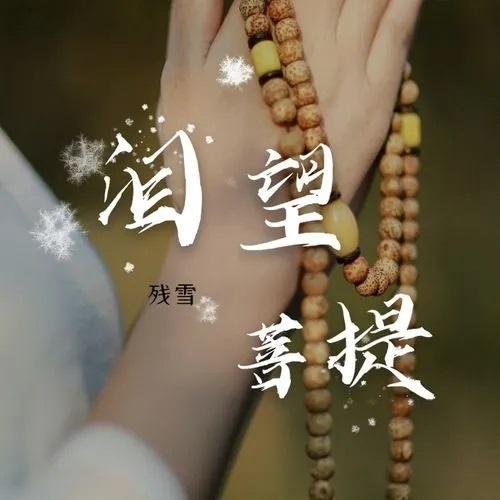 Lei Wang Pu Ti 泪望菩提 Looking At BodhiTearfully Lyrics 歌詞 With Pinyin By Can Xue 残雪