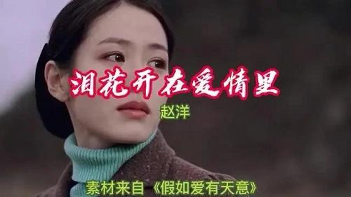 Lei Hua Kai Zai Ai Qing Li 泪花开在爱情里 Tears Bloom In Love Lyrics 歌詞 With Pinyin By Zhao Yang 赵洋