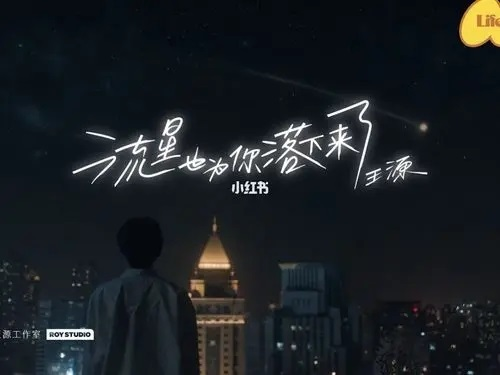 Liu Xing Ye Wei Ni Luo Xia Lai Le 流星也为你落下来了 The Meteor Also Fell For You Lyrics 歌詞 With Pinyin By Wang Yuan 王源 Roy Wang