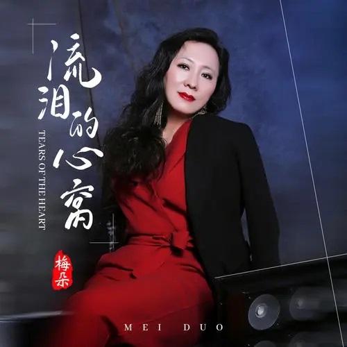 Liu Lei De Xin Wo 流泪的心窝 A Tearful Heart 歌詞 With Pinyin By Mei Duo 梅朵