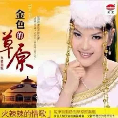 Huo La La De Cao Yuan Qing Ge 火辣辣的草原情歌 Hot Prairie Love Song Lyrics 歌詞 With Pinyin By Tian Yi Ming 田一名