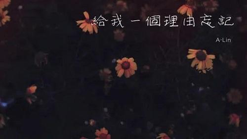 Ai Ni Bu Xu Yao Li You+Ba Wo De Bei Shang Liu Gei Zi Ji 爱你不需要理由+把我的悲伤留给自己 Love You Without Reason +Leave My Sadness To Myself Lyrics 歌詞 With Pinyin By Yue Yu Xiao Lin Ge 粤语小林哥
