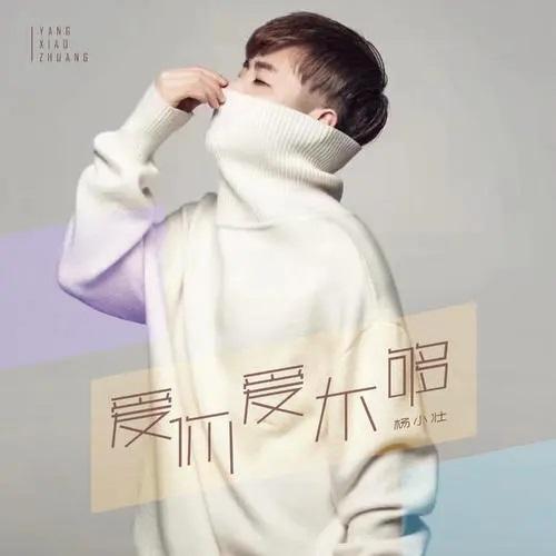 Ai Ni Ai Bu Gou 爱你爱不够 Love You Won't Enough Lyrics 歌詞 With Pinyin By Yang Xiao Zhuang 杨小壮 Yang Xiao Zhuang.webp